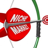 Niche Market - Bow & Arrow