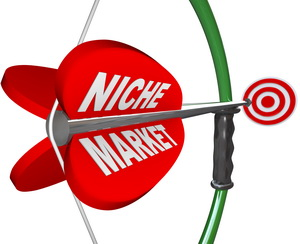 Niche Market - Bow & Arrow